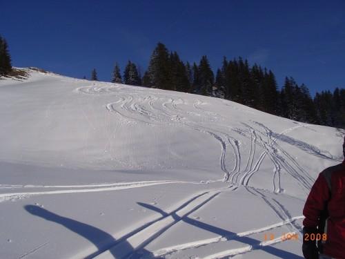 HH Ski